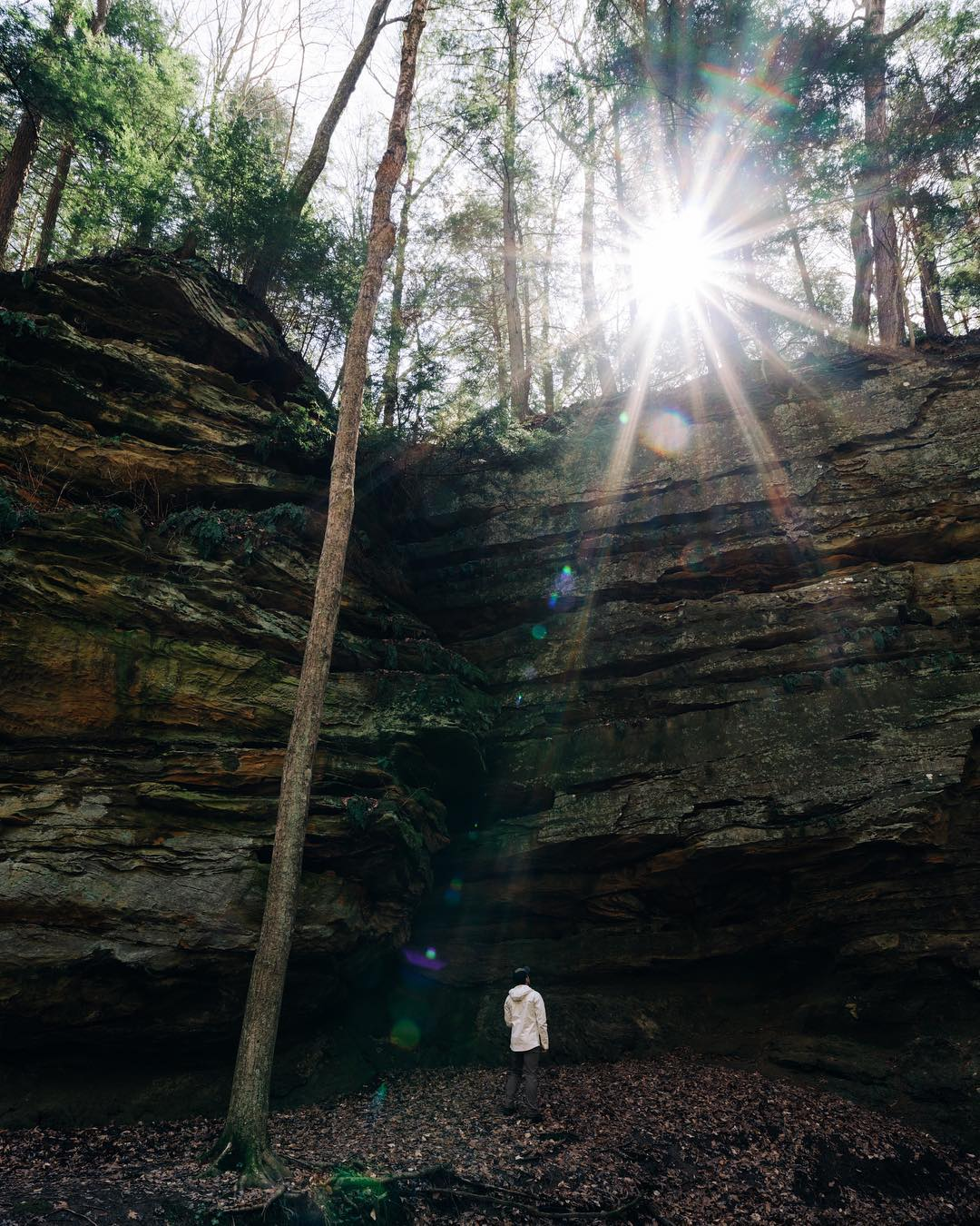 There are over 8 state parks about an hour drive radius from Indy. Shades State Park, my personal favorite, offers terrain you generally don't see in Indiana. Grab a to-go lunch and some snacks to take a day trip out here for all the hiking and canoeing possibilities.