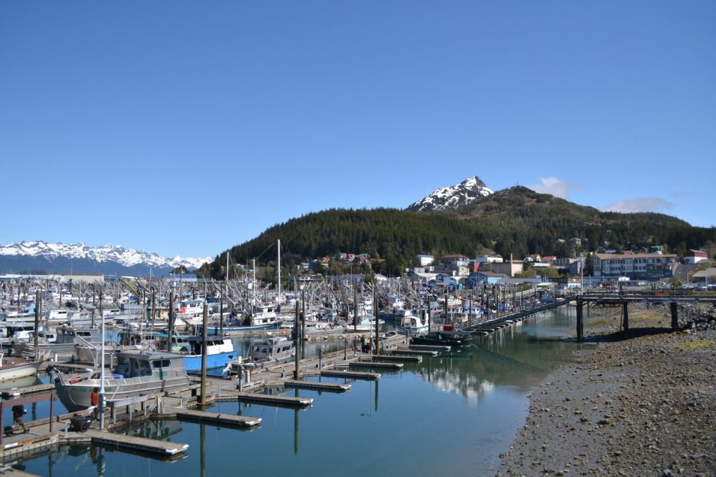 Full harbor in Cordova, Alaska