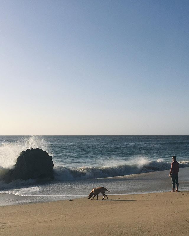 This is a picture of a man and his dog on the beach in Big Sur.