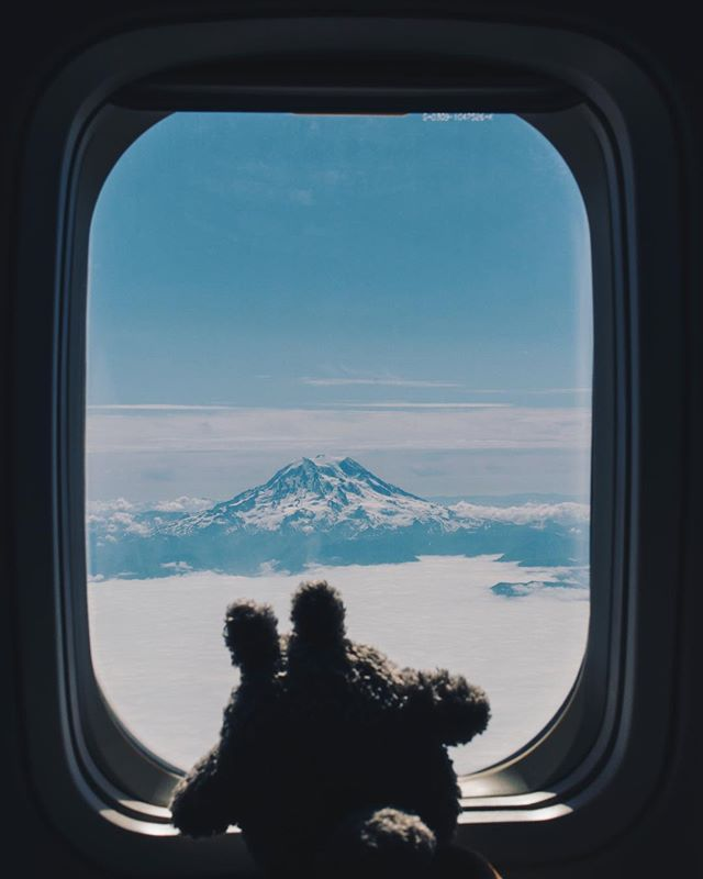 Photo of child's stuffed giraffe animal looking out an airplane window at a snow-capped mountain